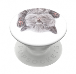 Cat Nap Pop Socket